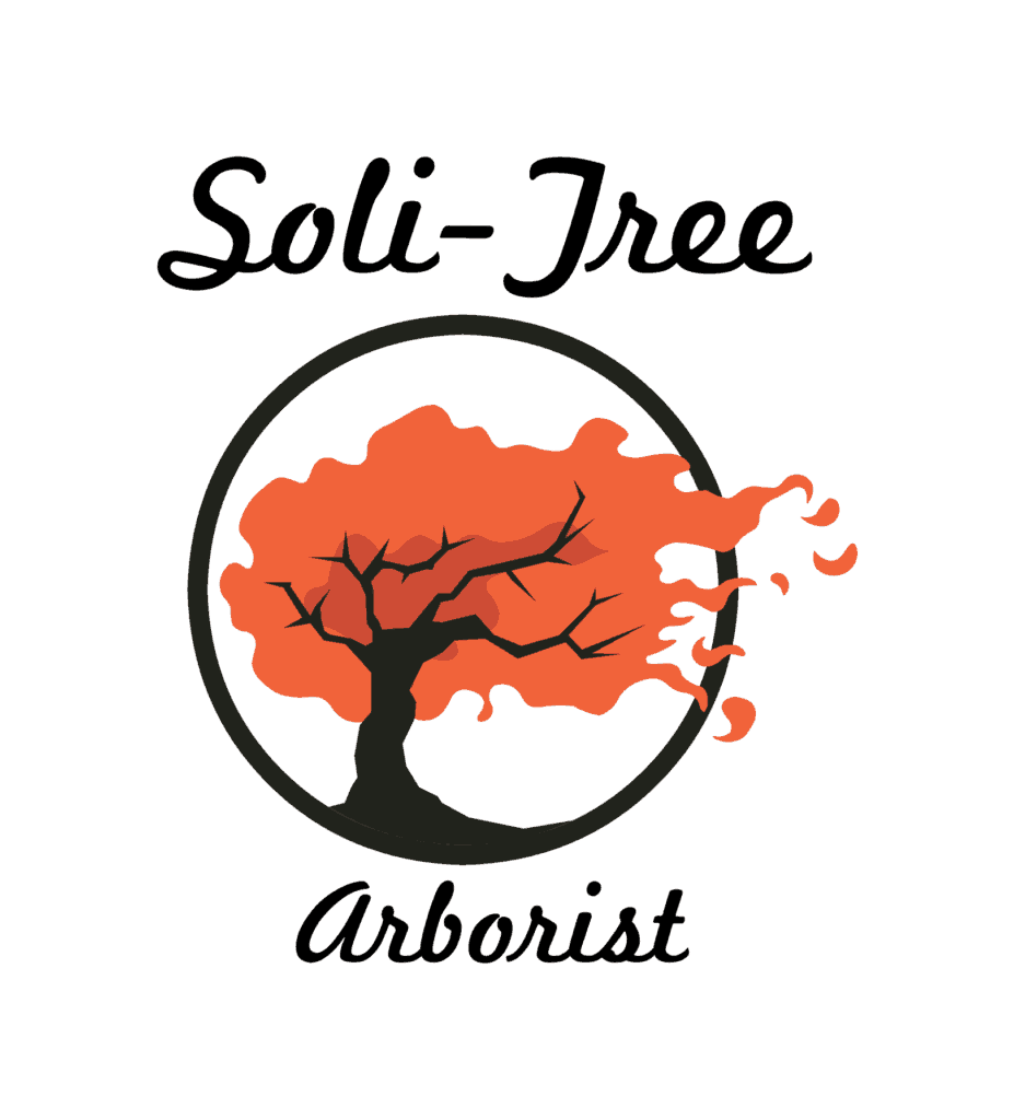 Soli-tree Tree Surgeon Logo
